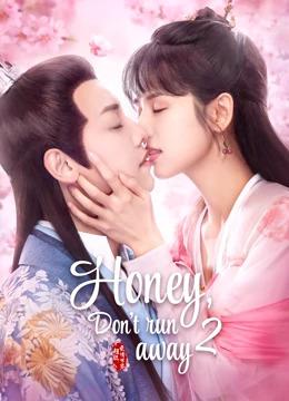 Honey, Don't Run Away 2